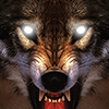 دانلود Life Of Wolf 2014 v1.5 - بازی زندگی گرگ برای اندروید