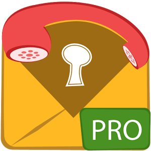 Hide SMS and Call Recorder Pro icon