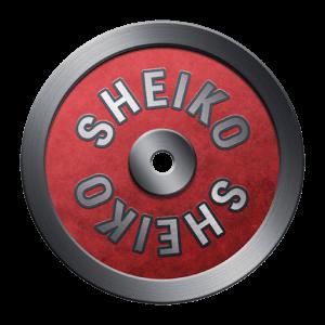 دانلود Sheiko Powerlifting Training 1.20 نرم افزار تمرینات بدنسازی در منزل اندروید