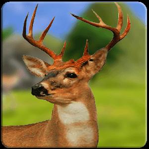 دانلود DEER HUNTER 2018 v1.2 بازی شکار حیوانات 2018 اندروید